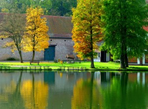 Autumn at Gravenrode