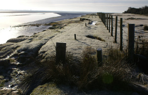 Frosty morning by the Wampool estuary
